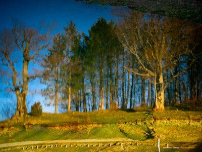 Parco del Gigante (Reggio Emilia, Italia)