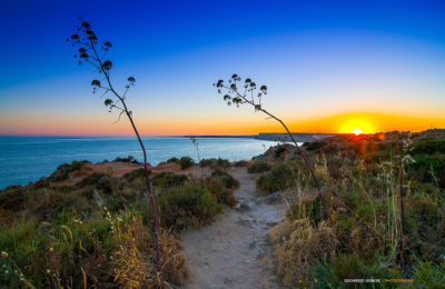 Lagos (Algarve - Portugal)